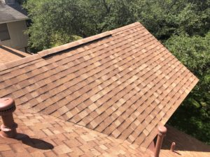 shingle color for roof